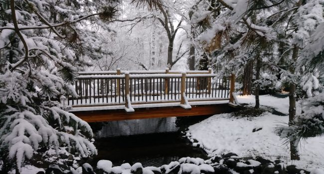 The bridge to the Boardroom in the snow