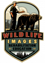 Wildlife Images Rehabilitation and Education Center
